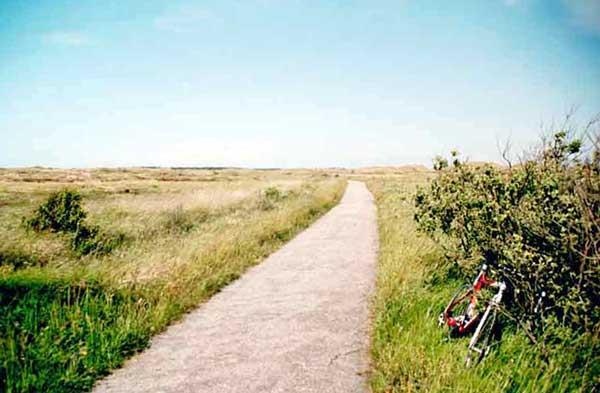 the hulsig heath